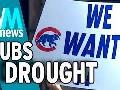Chicago Cubs in the World Series, 3 Facts About Ending Their Drought