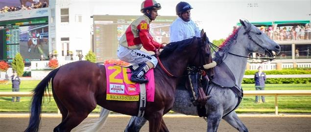 Thoroughbred racehorse Wicked Strong, at the Kentucky Derby