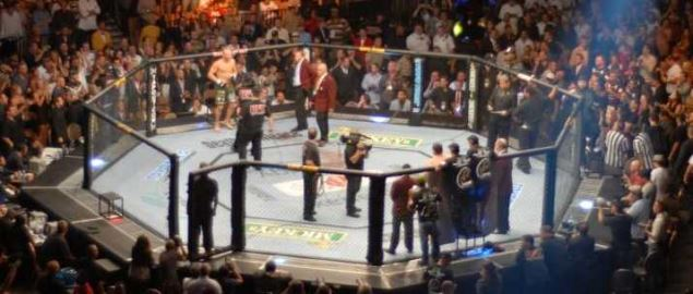 The UFC Octagon.